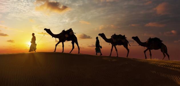 قصةسعيد بن زيد من العشرة المبشرين بالجنة