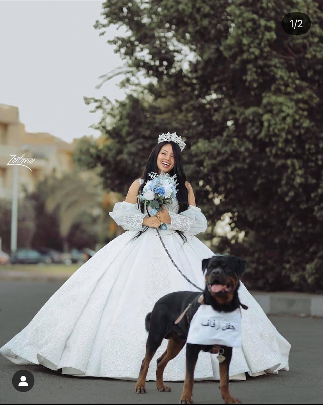 حقيقة زواج البلوجر هبة مبروك من كلب