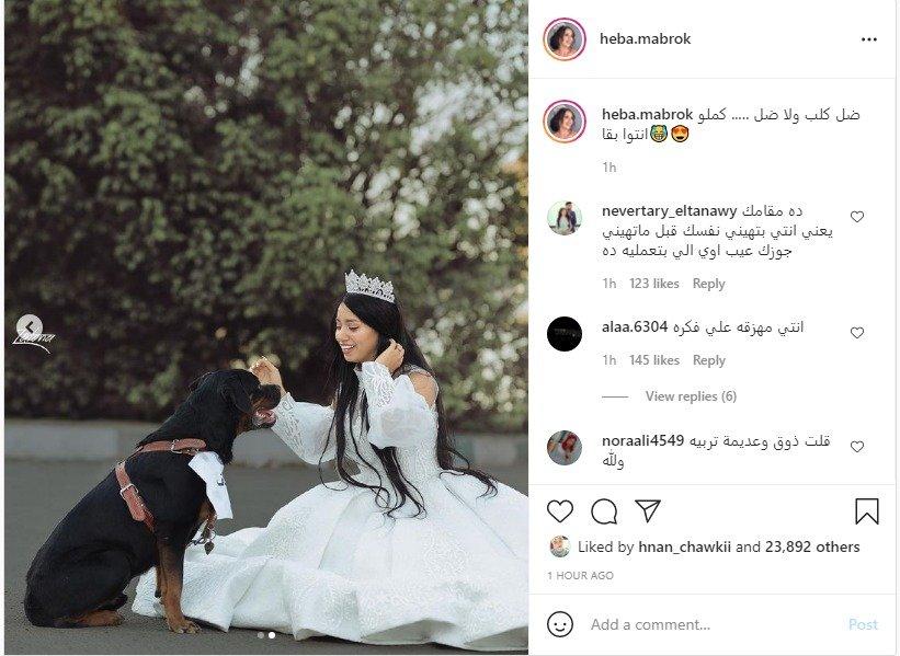 زواج البلوجر هبة مبروك من كلب