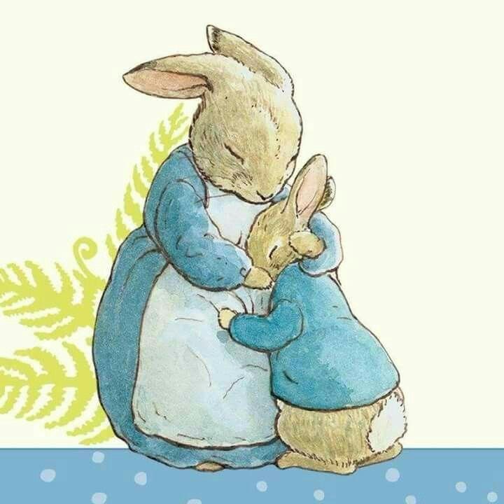 ام الأرنب بيتر