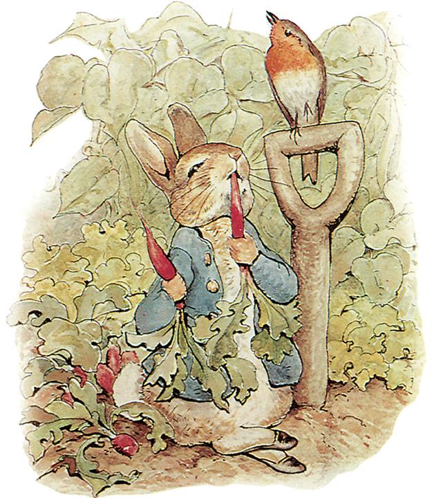 الأرنب بيتر
