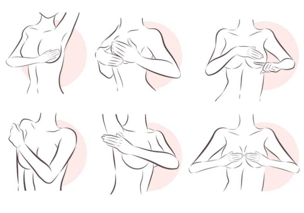 الطريقة الثالثة فحص الثدي أثناء الاستلقاء